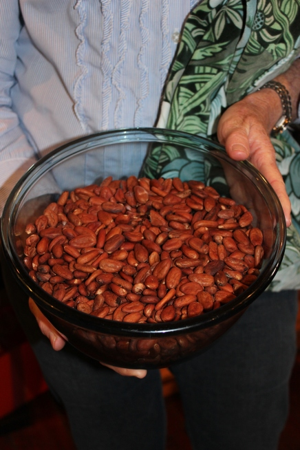 NZ Cocoa Beans